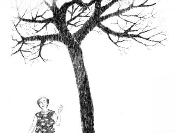 Drevo20